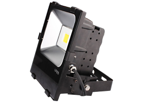 led flood light bulb 100 watt