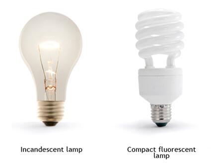 Regular and compact fluorescent bulbs